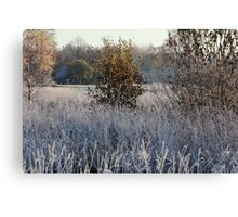 Farmstead in first frost day in autumn Canvas Print