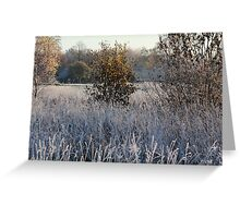 Farmstead in first frost day in autumn Greeting Card