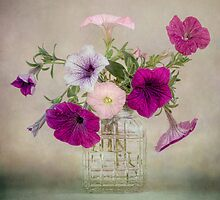 Petunias by Mandy Disher