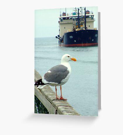 Gull Dredger Greeting Card