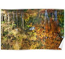 Autumnal Reflections II Poster
