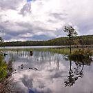 Loch An Eilein by Xandru