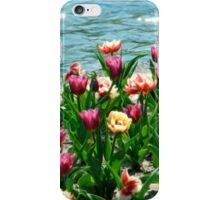 Painted Tulips (iPhone/iPod Case) iPhone Case/Skin