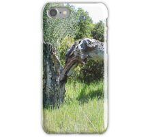 Split Tree... iPhone Case/Skin