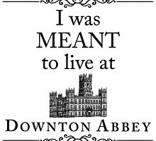 I was MEANT to live at Downton Abbey by yaney85