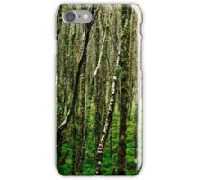 Birch trees iPhone case iPhone Case/Skin