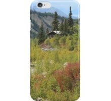 i Scenic Alaska iPhone Case/Skin