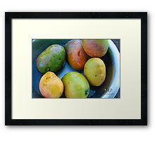 Ripe Mangos Framed Print