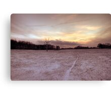 snow way Canvas Print