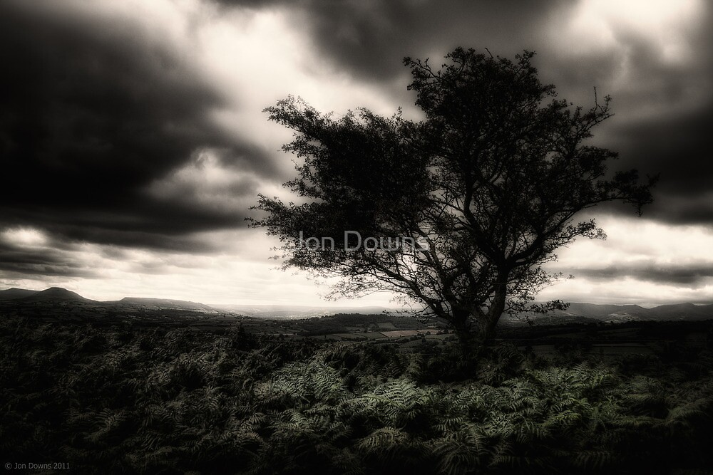 once upon a hill by Jon Downs