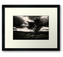 once upon a hill Framed Print