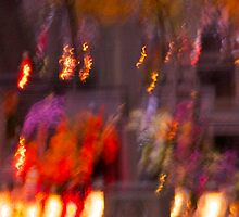 "All Souls' Day - multicolor floral waterfalls  . Kraków . "" Photo-Secession  - Gallery 291 "" . by  Brown Sugar . Views (42) thx! by © Andrzej Goszcz,M.D. Ph.D"