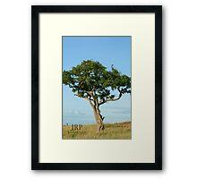 Tree in Uganda Framed Print