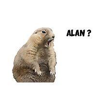 Meerkat - Shouting Alan - No Background Photographic Print