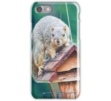 Squirrel Eating in the Rain iPhone Case/Skin
