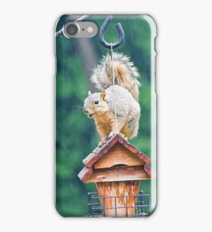 Squirrel Eating in the Rain 2 iPhone Case/Skin