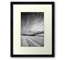 Orange Peel BW Framed Print