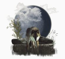 Wolf by Spyder
