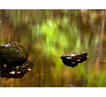 Early Autumn Reflections Photographic Print