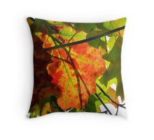 Autumn Collage, New York City Throw Pillow