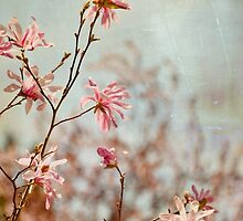 spring twigs by Iris Lehnhardt