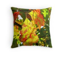 Painted leaves, New York City  Throw Pillow