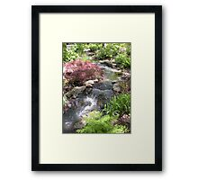 Bubbling Brook in the Garden Framed Print