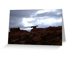 Strange rock formation in the shape of a Condor near the Siloli desert, Bolivia Greeting Card