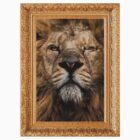 one eyed lion (framed) by William Åsgårdh