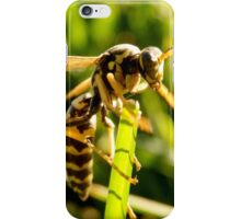 In The Grass - Wasp iPhone Case/Skin
