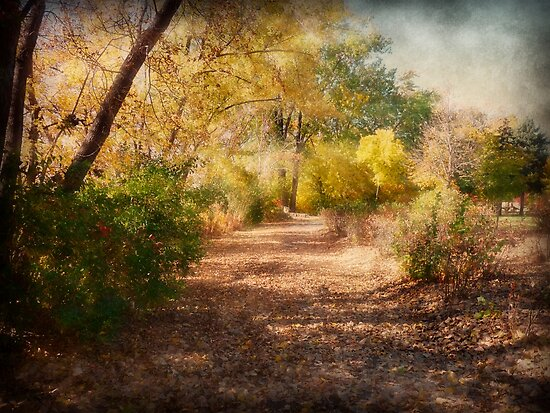 Autumn Path by Lucinda Walter