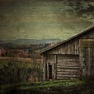 The Old Barn in the Country by vigor