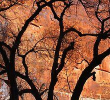 Fiery Walls of Zion by Harry Oldmeadow