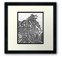 the weight and wait of winter Framed Print