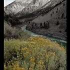 Along the Fraser Canyon by katrinekaarse
