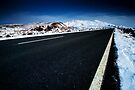 Road to Ruapehu by Michael Treloar