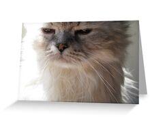 Cat Face! Greeting Card