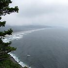 Oregon Coast by HapaCanuck