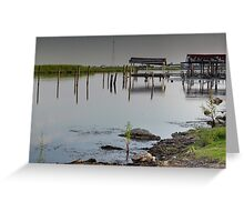 Louisiana Bayou 2 Greeting Card