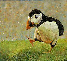 Puffin Strut by Richard Bradish Jr