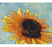 Face to the Sun Photographic Print