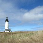 Yaquina Head, Oregon by HapaCanuck