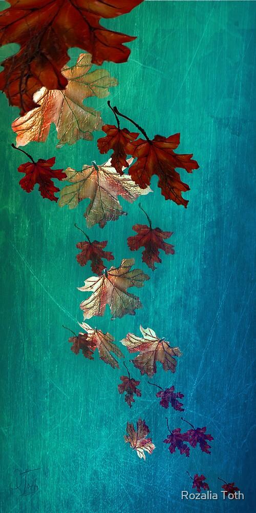 Blown Away by Rozalia Toth