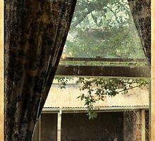 Music Room Window by anneisabella