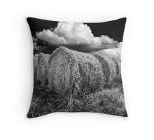 Daylesford Hay Throw Pillow