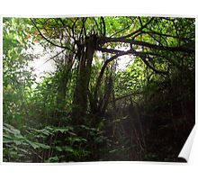 Broken tree Poster