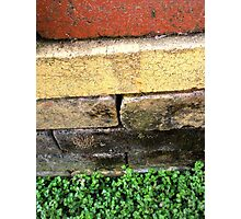 """""""Bricklayer's Layers"""" Photographic Print"""