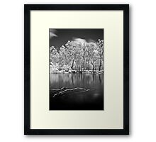Sticks in Water Framed Print