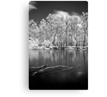 Sticks in Water Canvas Print