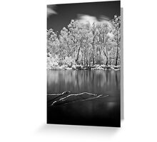 Sticks in Water Greeting Card